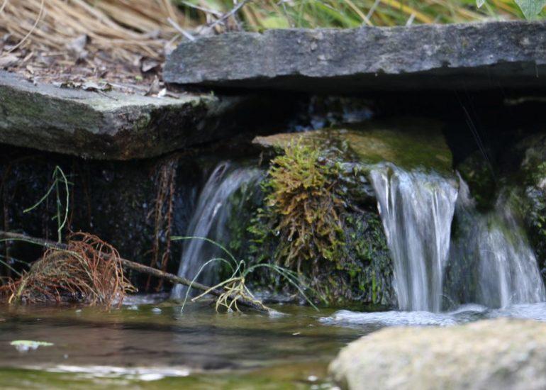 Naturstein-Garten_Galerie06
