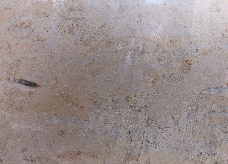Jura Marmor – feinster Kalkstein von der Fränkischen Alb