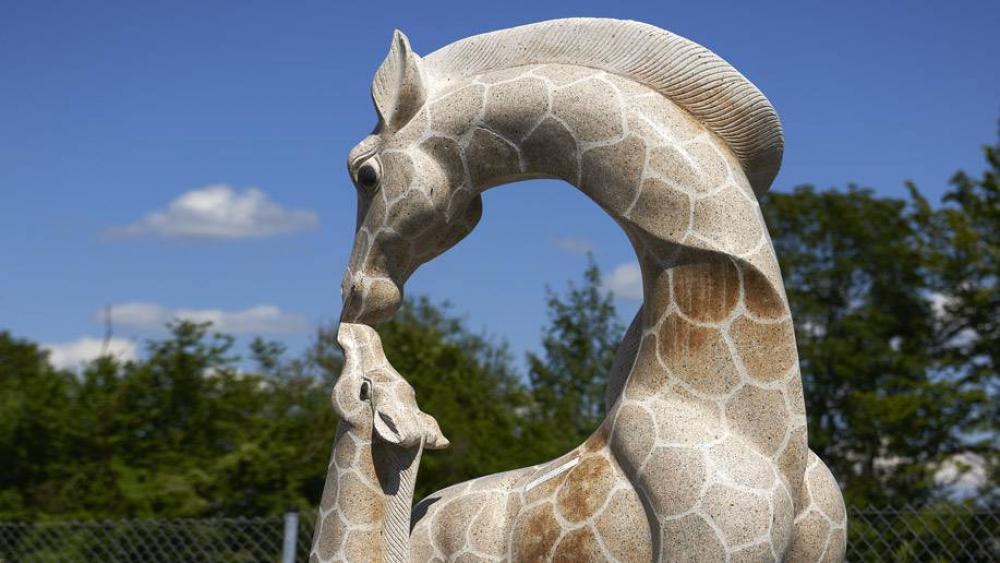 Giraffen als Teil eines Wasserspiels