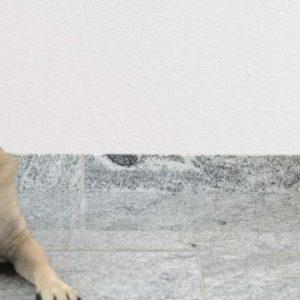 Sockelleiste Granit Viscount White, poliert